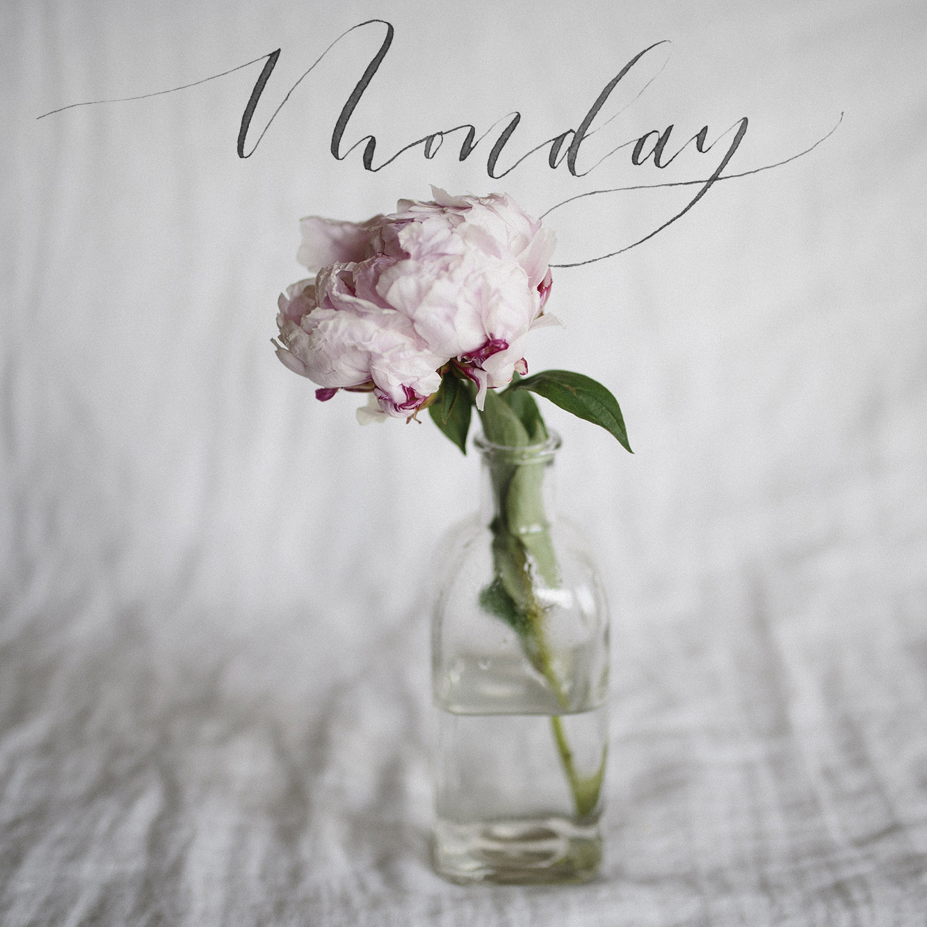 Flowers_Staged_Monday2.jpg