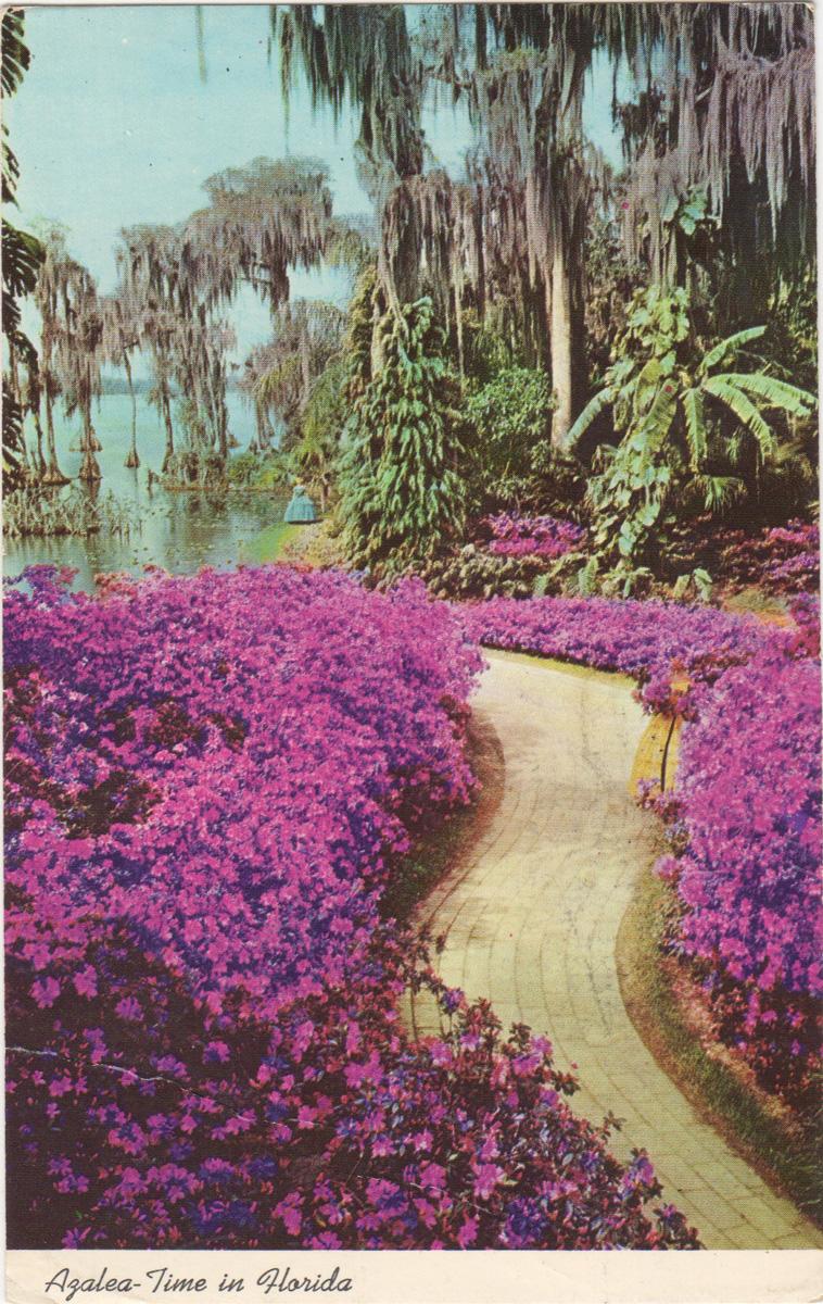 53_postcard-01-2.jpg