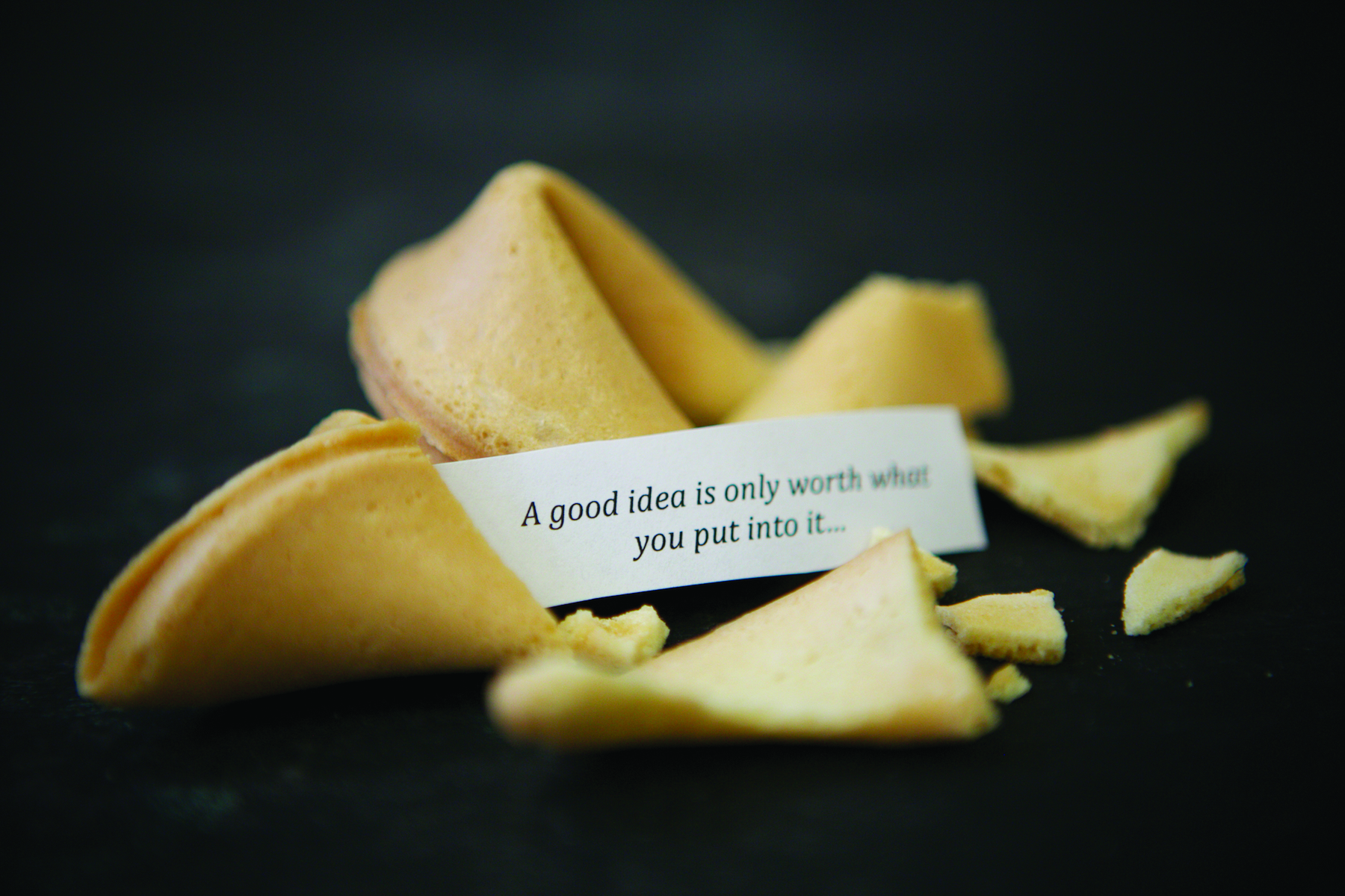 Fortune Cookie CMYK.jpg