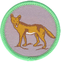 DingoPatrol.png
