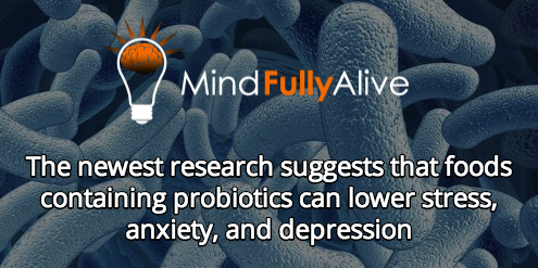 The newest research suggests that foods containing probiotics can lower stress, anxiety, and depression