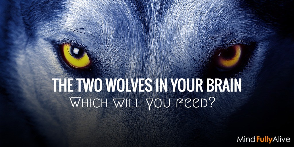 Which neurological wolf will win? The one you feed. #mindfulness #intention