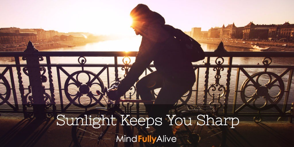 #Research Suggests #Sunshine Helps Your #Mind Stay Sharp