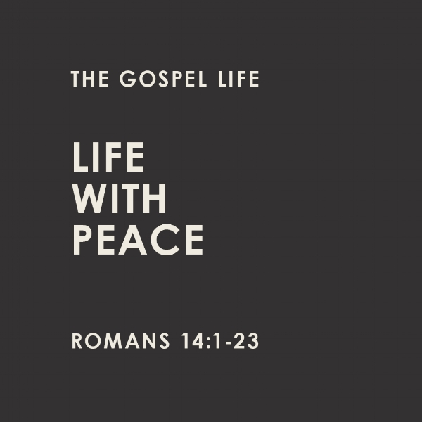 The Gospel Life Sermon Squares7.jpg