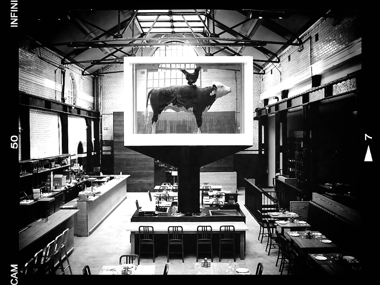 THE COW & THE ROOSTER BY DAMIEN HIRST /