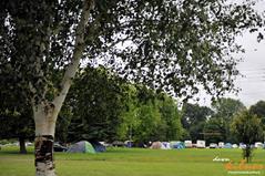 dk.campsite (Copy).jpg