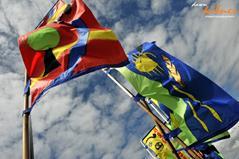 dk.flags (Copy).jpg