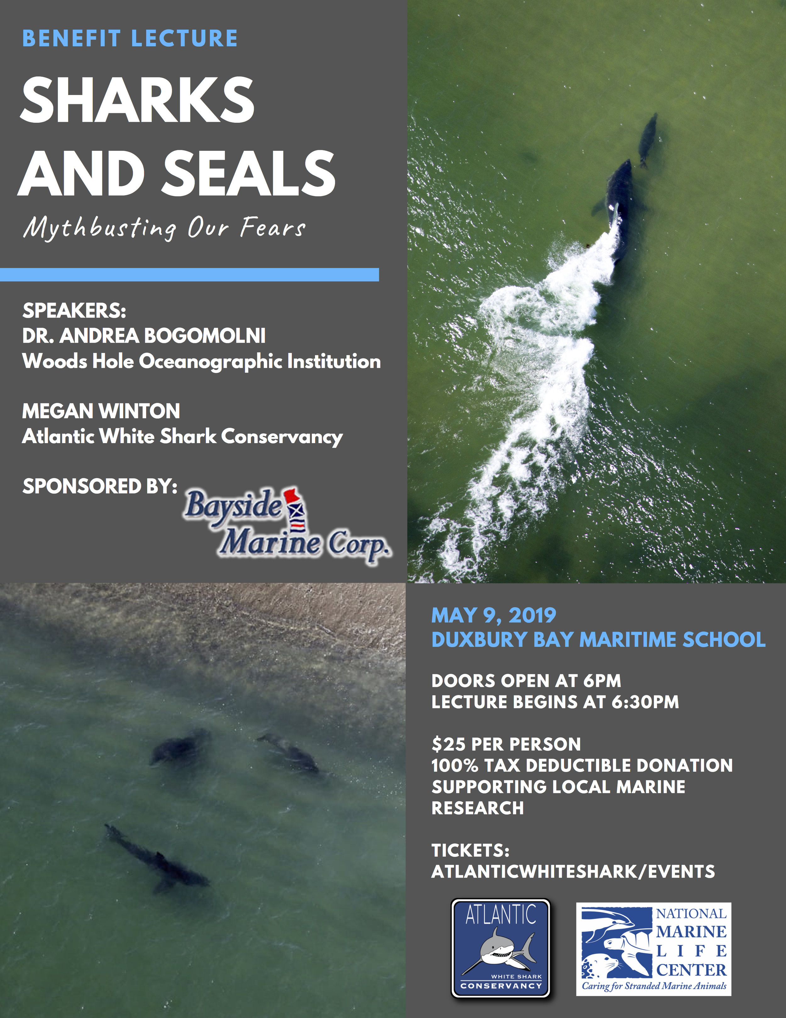 Sharks & Seals Flyer.jpg