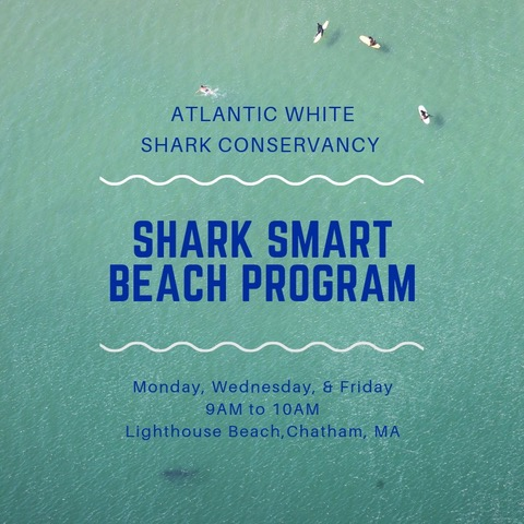 Attend an Event — Atlantic White Shark Conservancy