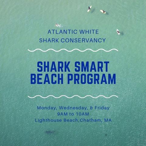 Shark Smart Insta FINAL 1.jpeg
