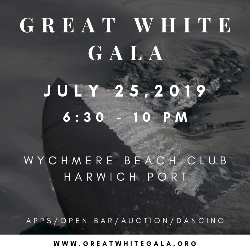 Great white gala.png