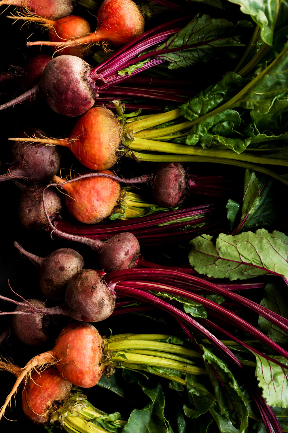 Eat Your Beets | Amy Roth Photo