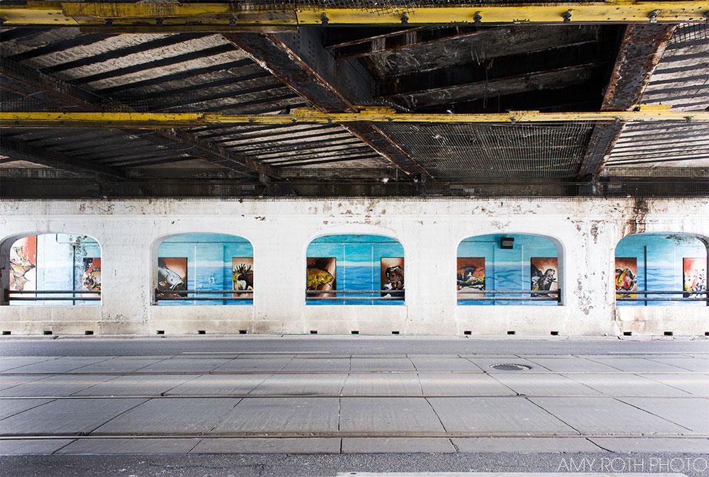 Under the Bridge | Amy Roth Photo