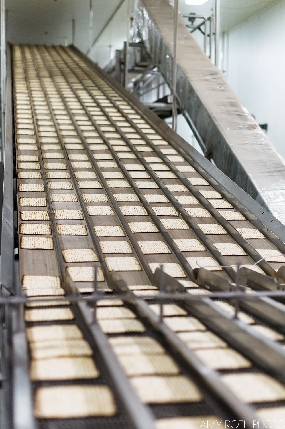 Baked matzoh rides the conveyor belt to the packaging area. Photography by Amy Roth, on assignment for Edible Jersey.