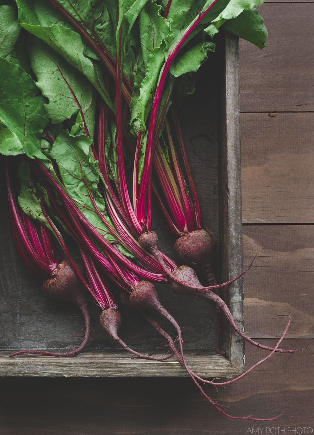 Baby Beets | Amy Roth Photo