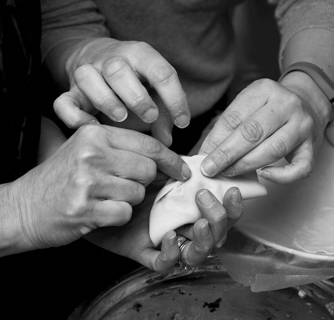 Dumpling Instruction | Amy Roth Photo