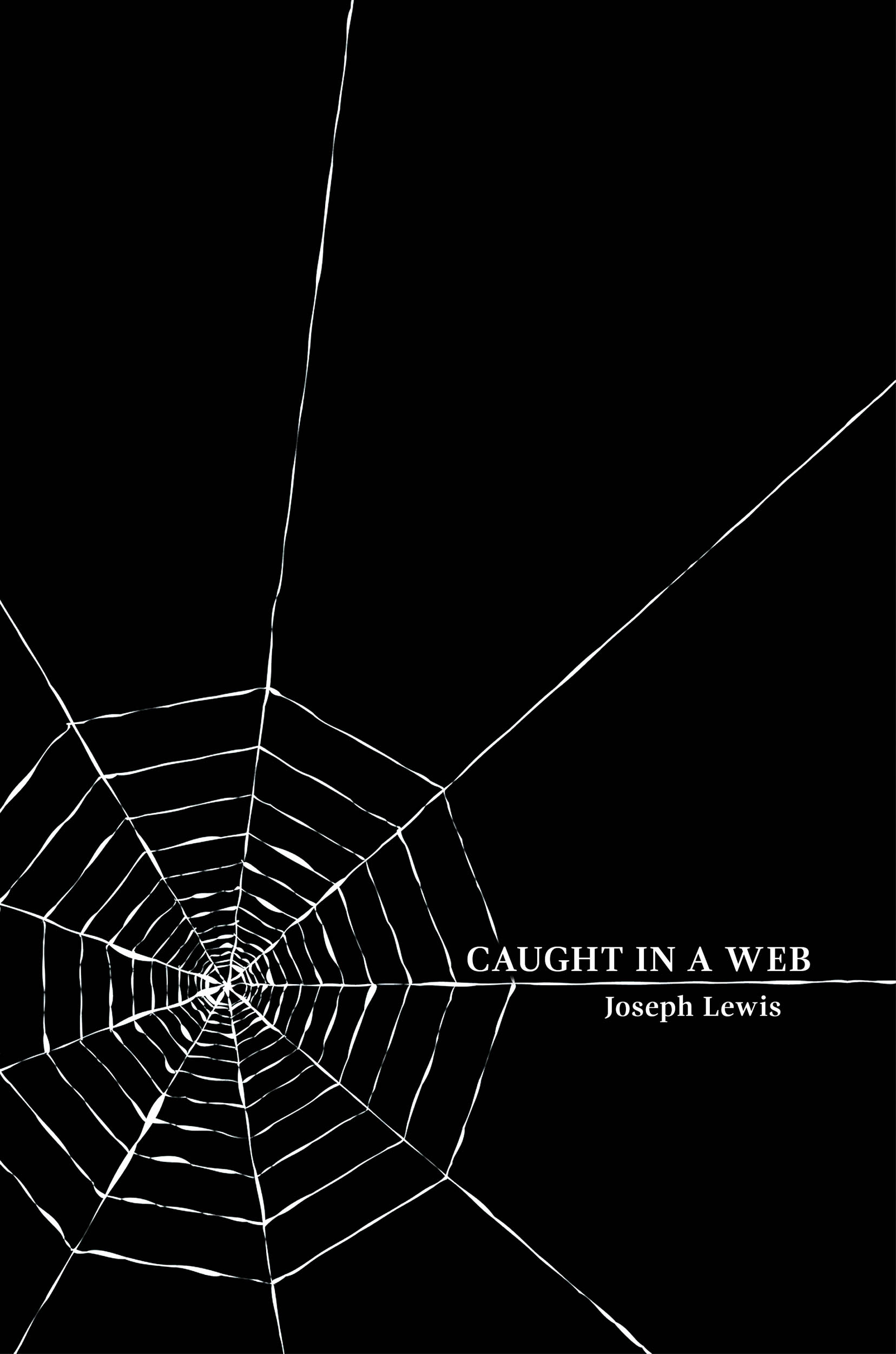 Caught In A Web eimage.jpg