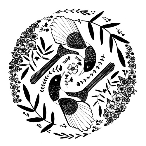 Mhairi-Stella Illustration