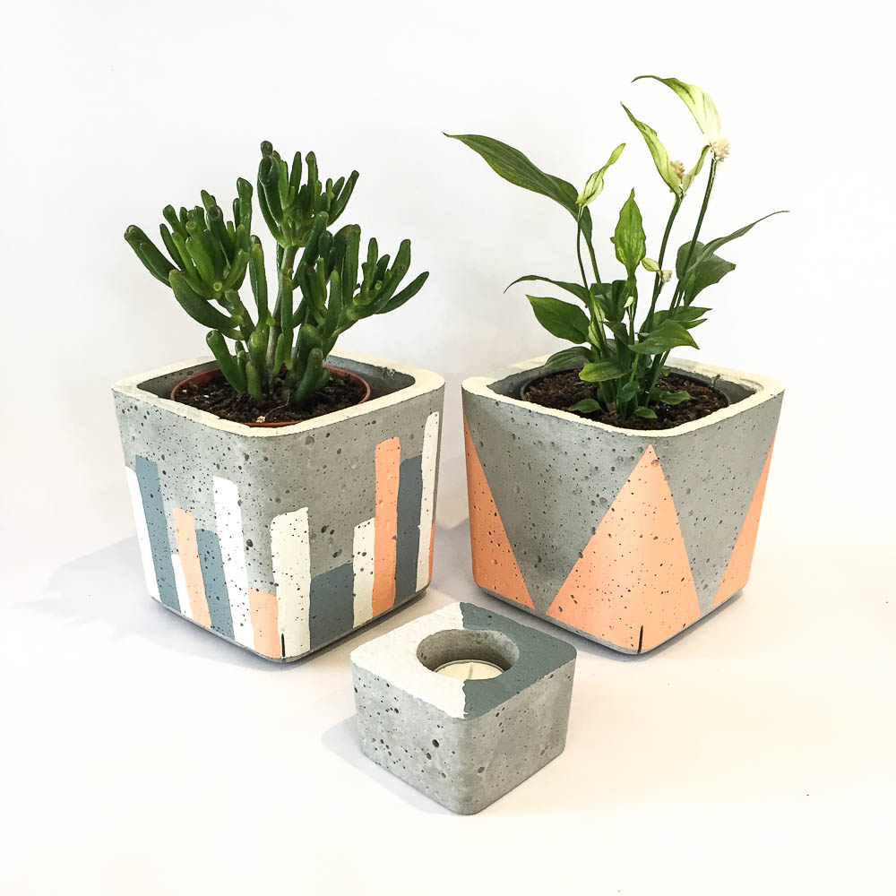 Twig Plants and Pots