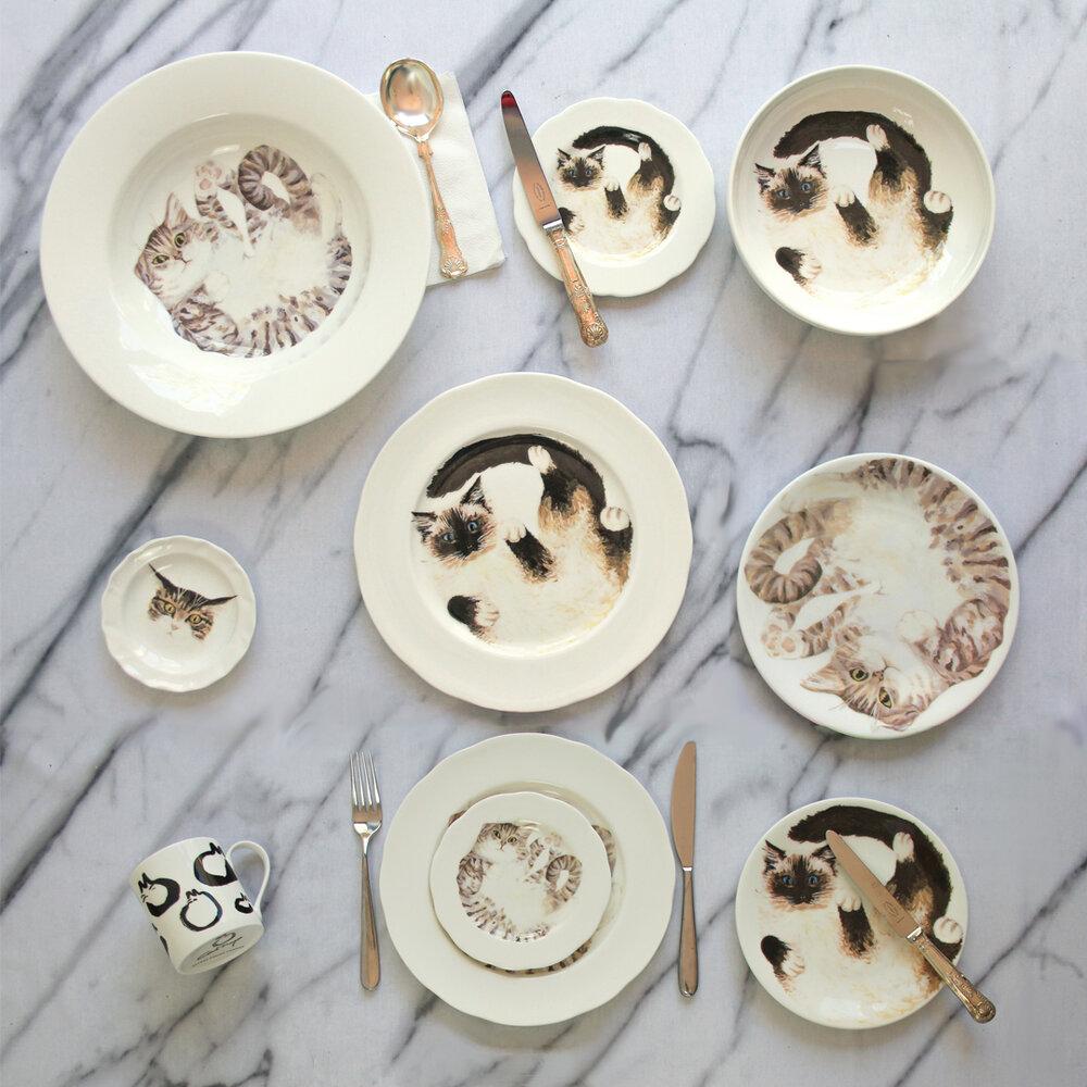 Catnap Design