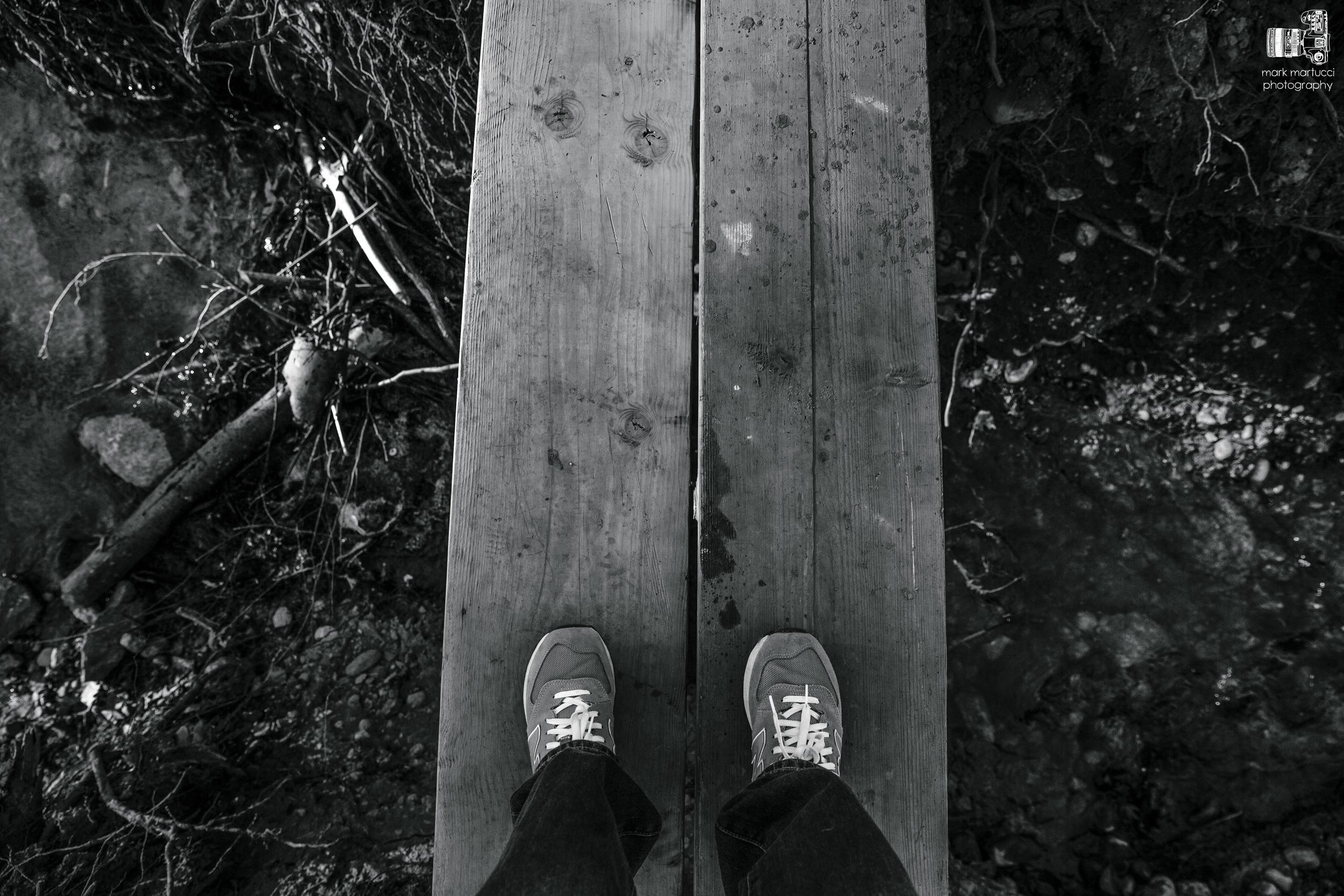 january hike (7).jpg