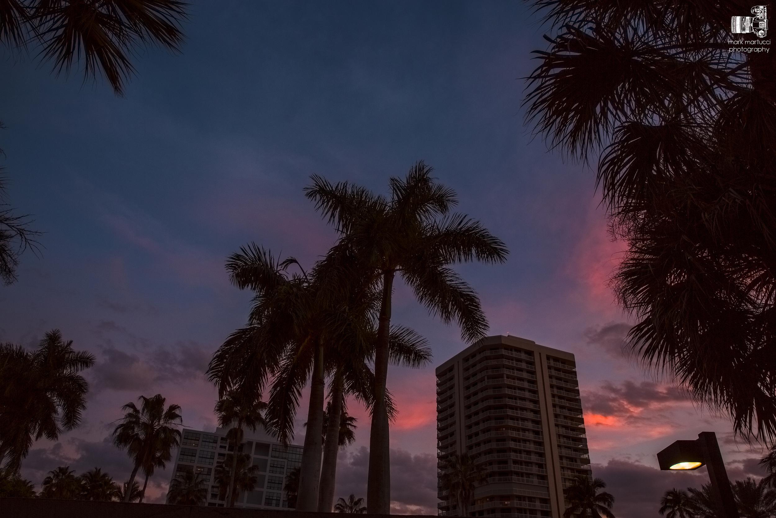 sunset buildings.jpg
