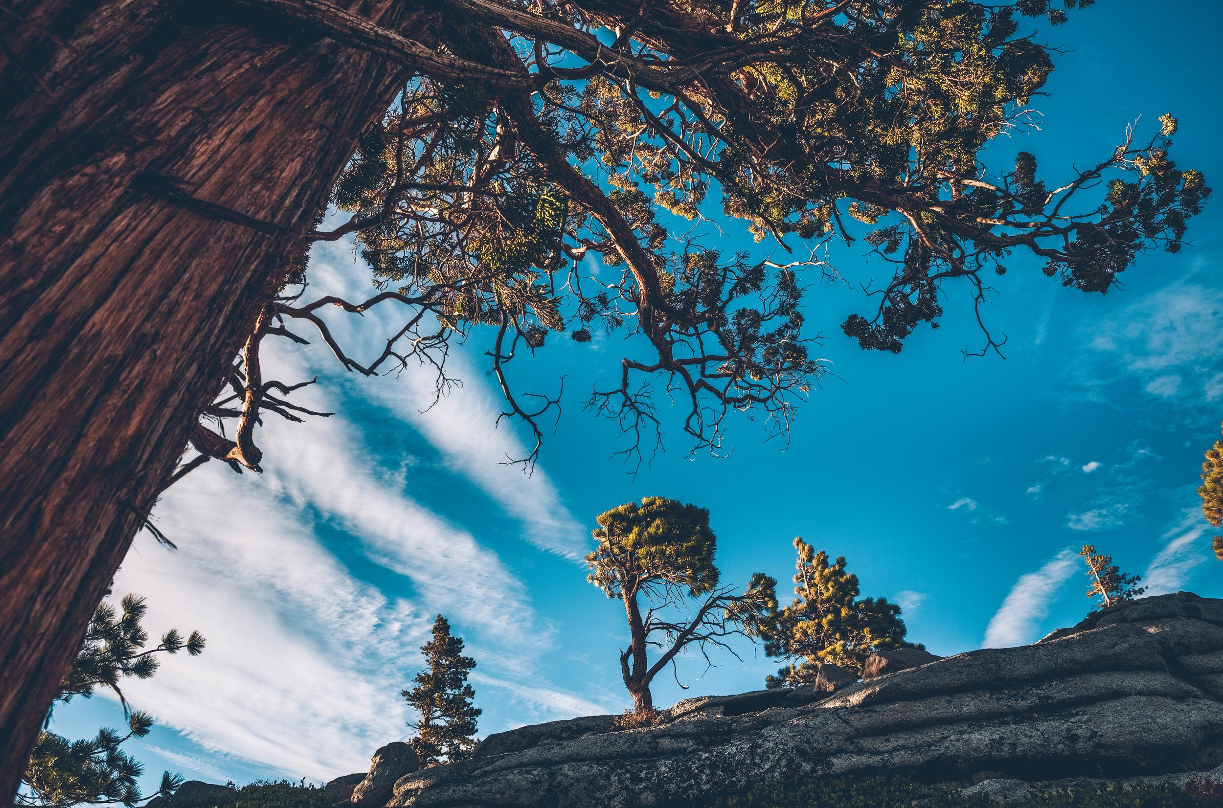 desolation wilderness (18).jpg