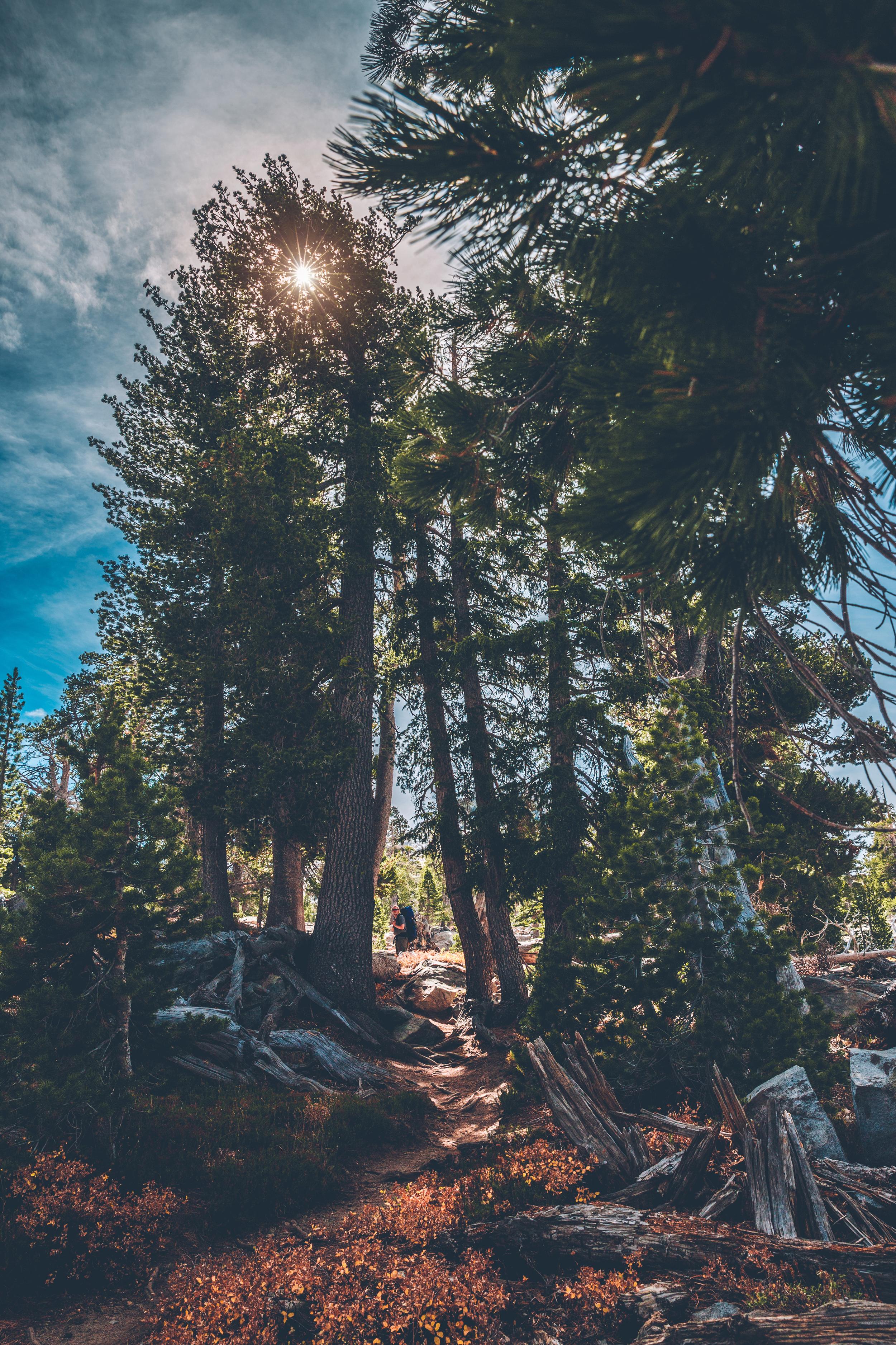 desolation wilderness (115).jpg