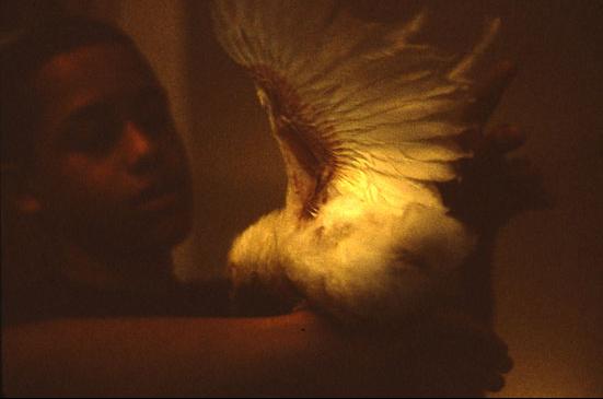 CROPJustin Jaime, ENY Brooklyn Summer 2000.jpg