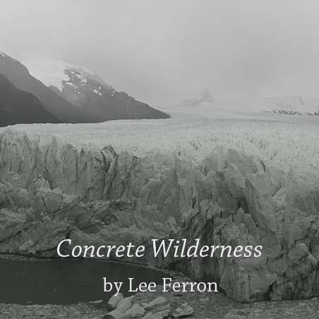 concretewilderness.jpg