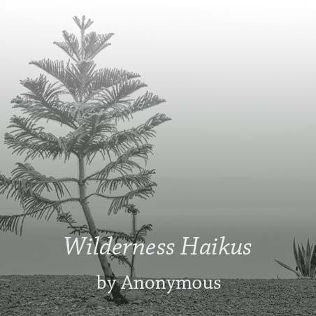 wildernesshaikus.jpg