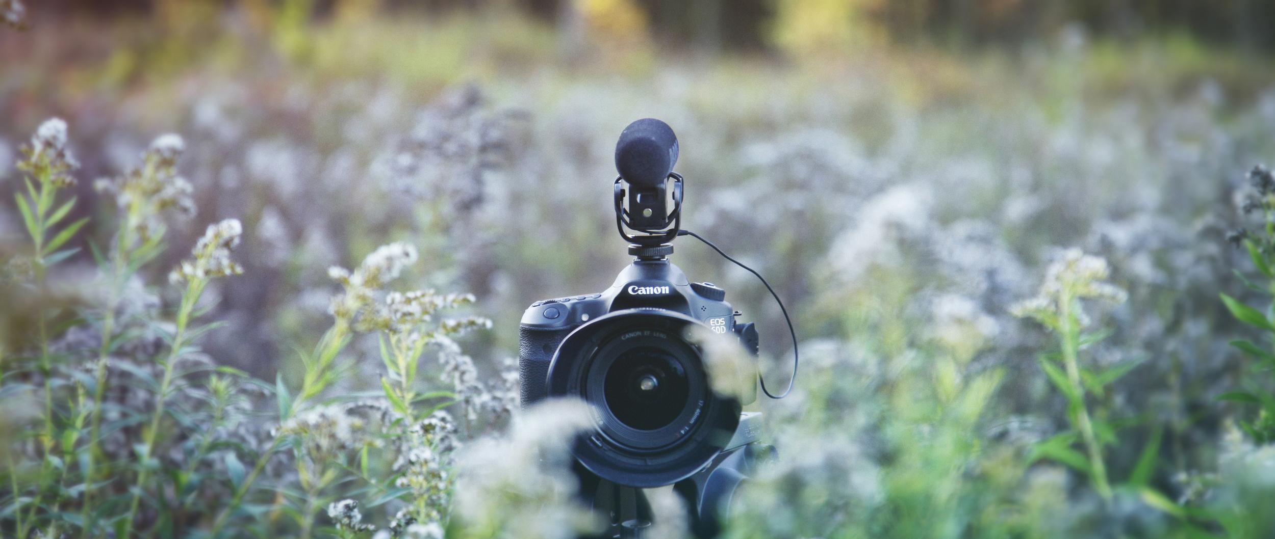 CameraBanner_1.jpg