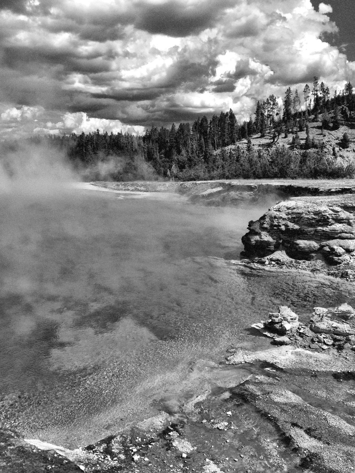 Yellowstone National Park, Wyoming   Purchase