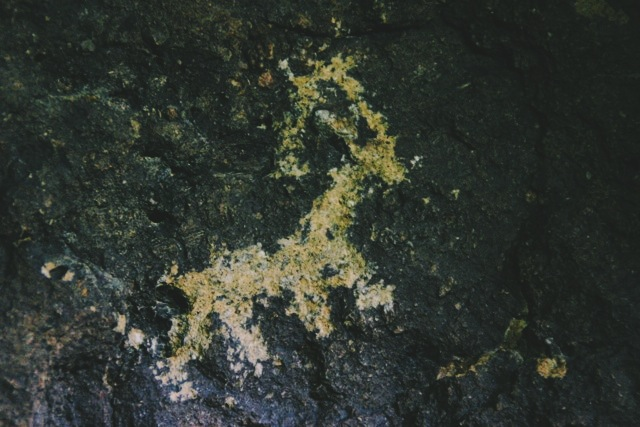 A petroglyph on the trail