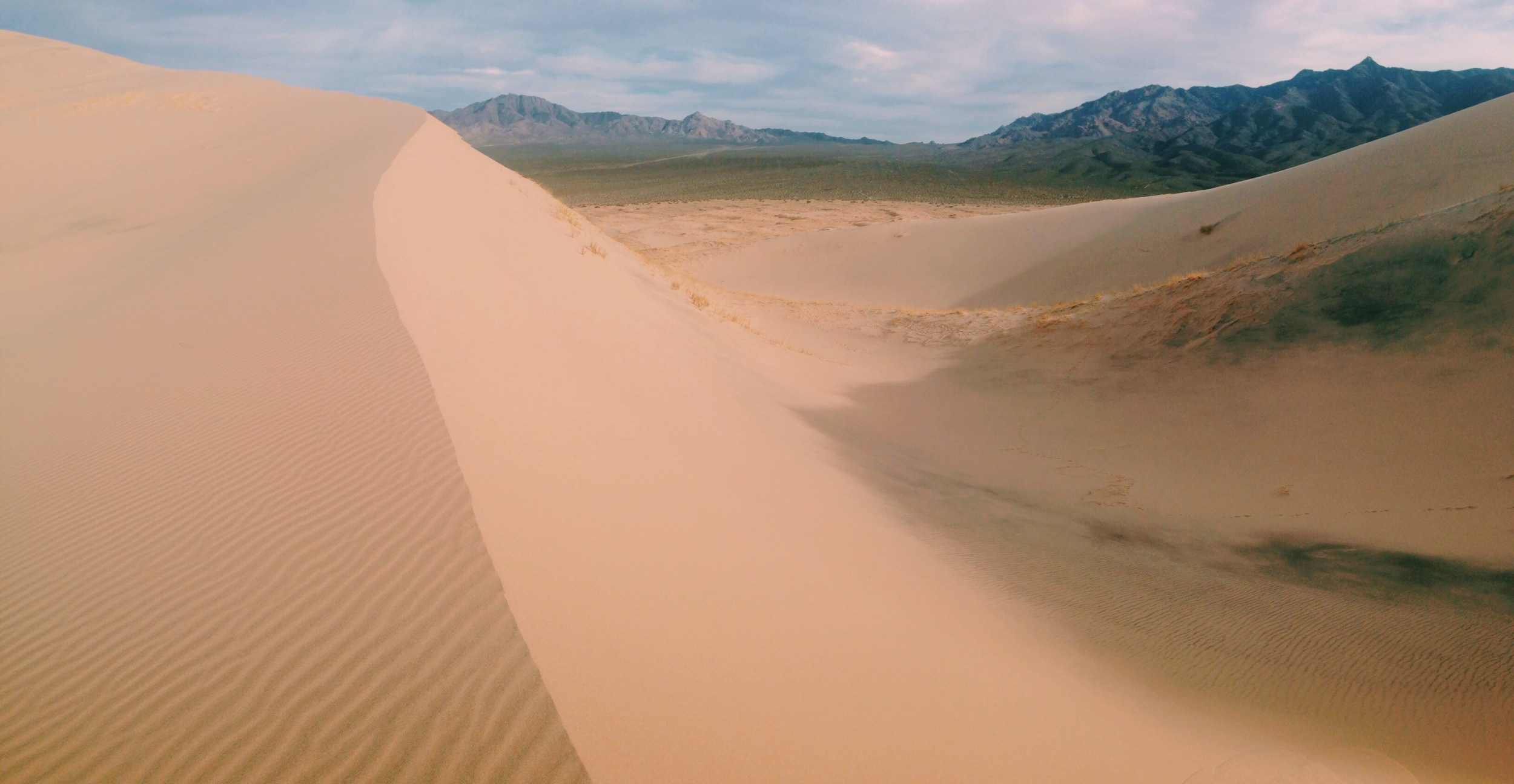 Kelso Dunes, with Granite Mountains in the background