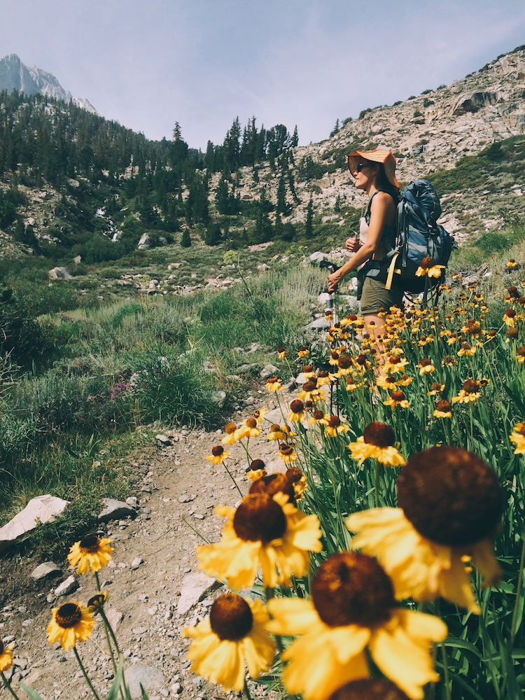 Wildflowers were still blooming in early August on the trail to Kearsarge Pass.