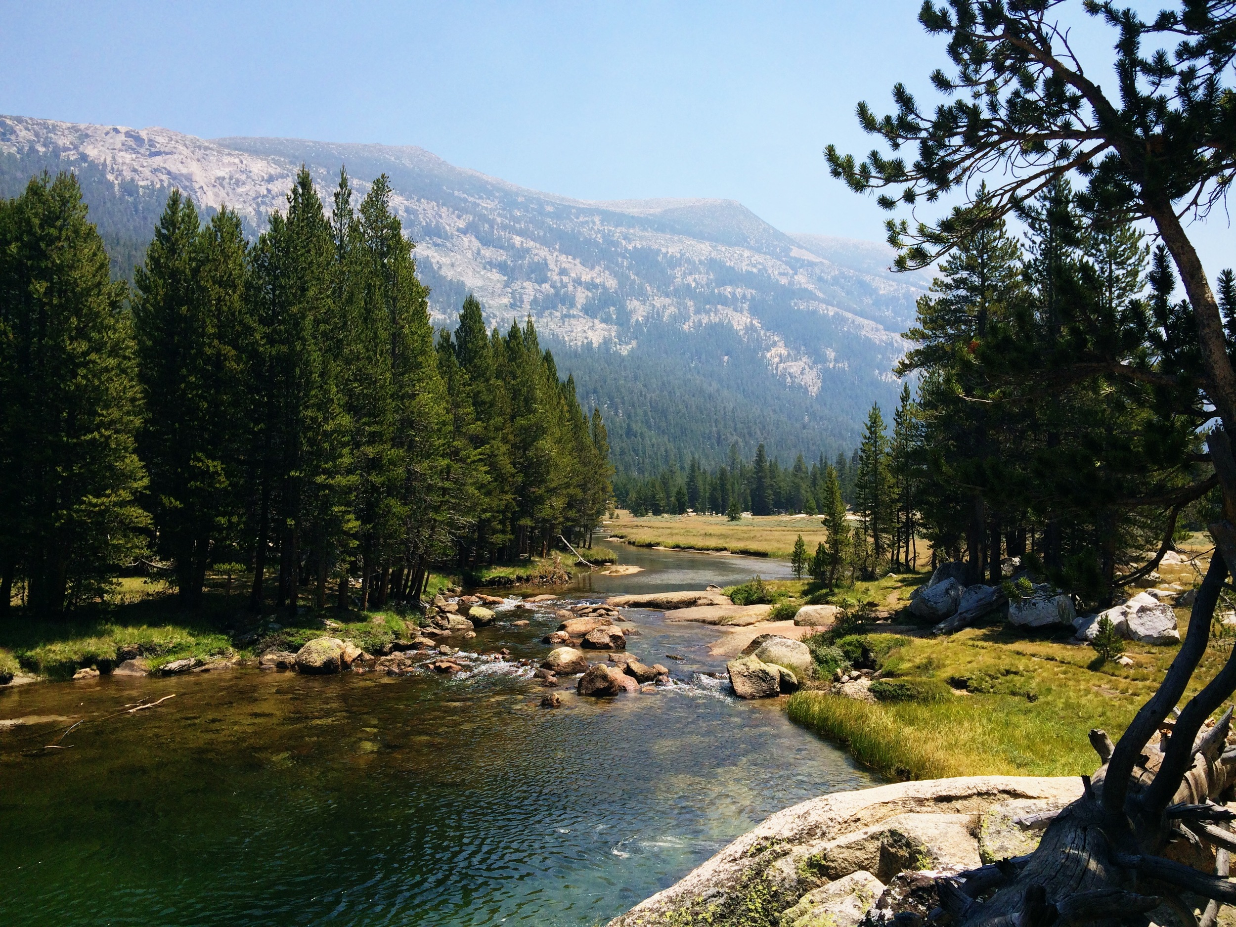 Entering Lyell Canyon from Tuolumne Meadows.