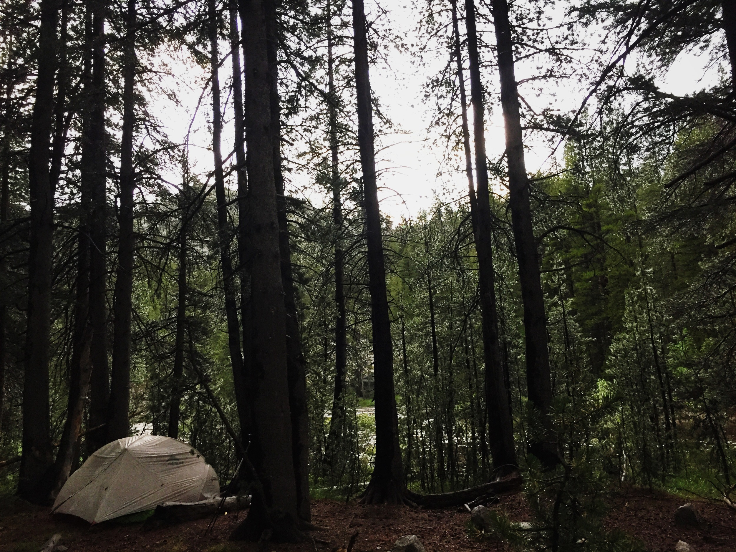 Day 7: camped near Bear Creek near the junction to Lake Italy.