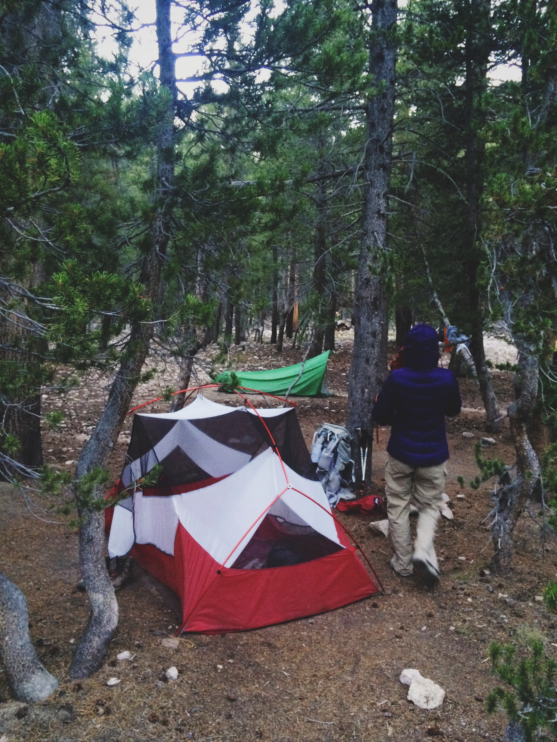 Day 15: camped at Lower Vidette Meadow.
