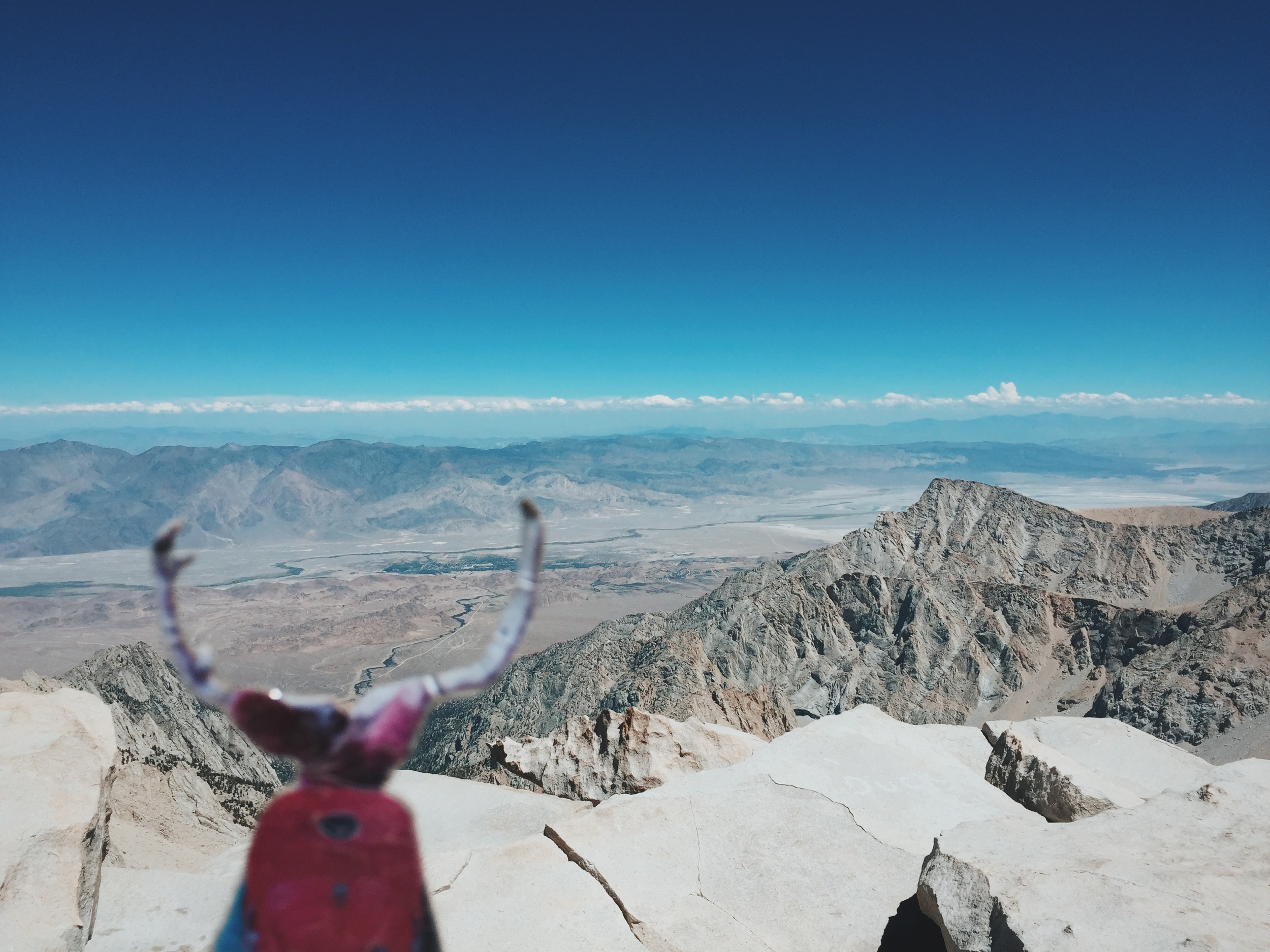 Jed couldn't get enough of the views from the summit.