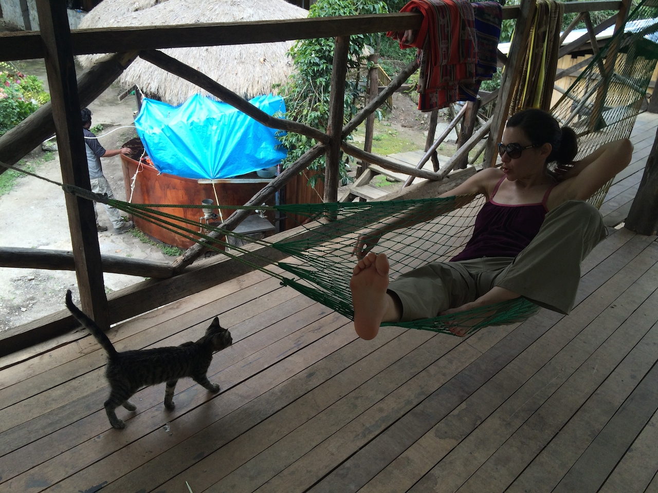 Lunch on day 4 was in a resort-like space complete with hammocks, very cute cats and excellent shade-grown coffee. We had our best cup of coffee in Peru here.