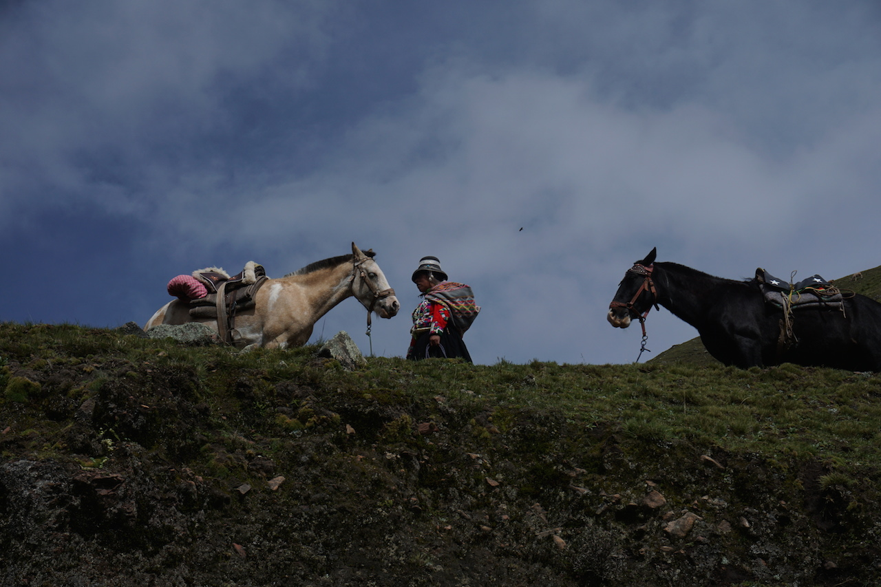 Highland dwellers ready to rescue weary hikers with a horse rental.