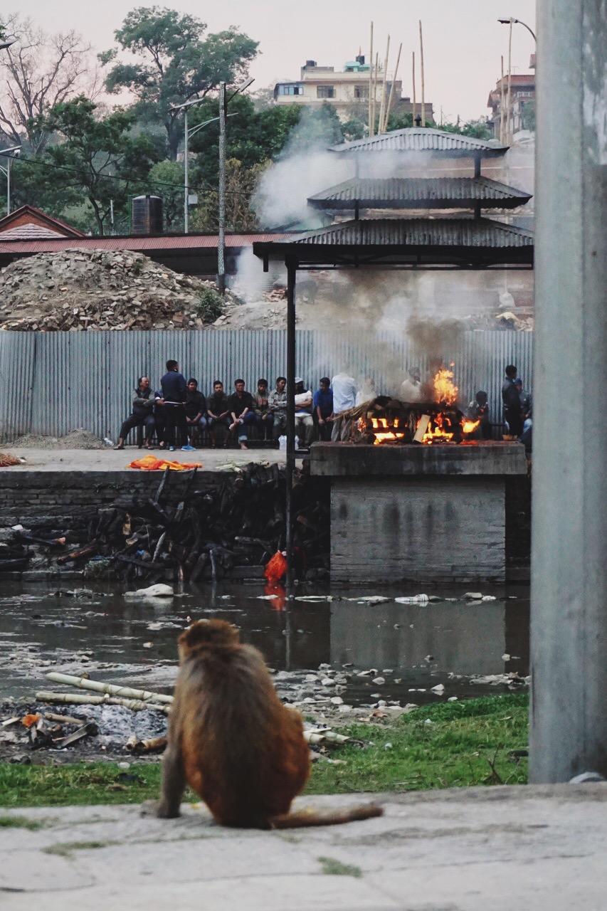 Cremation, Bagmati River ghats