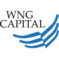 wng capital logo.png