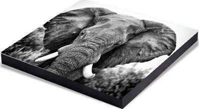 Black flush mount frame - Optional mount for MetalPrints
