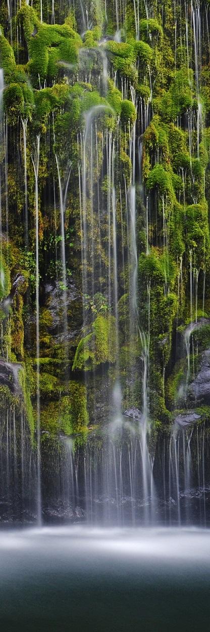 15Moss Falls - Vertical.jpg