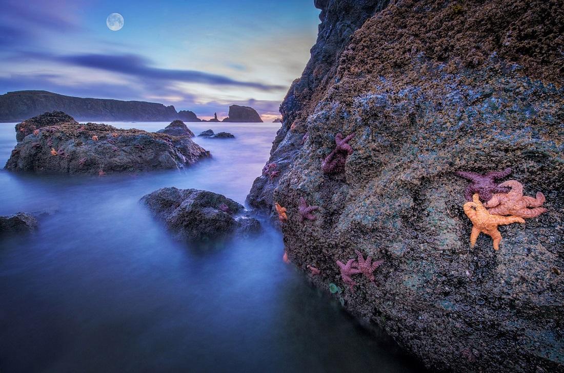 Oregon Coast MOON3.jpg