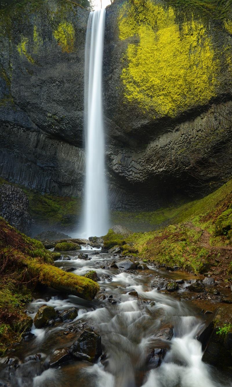 Oregon Bliss.jpg