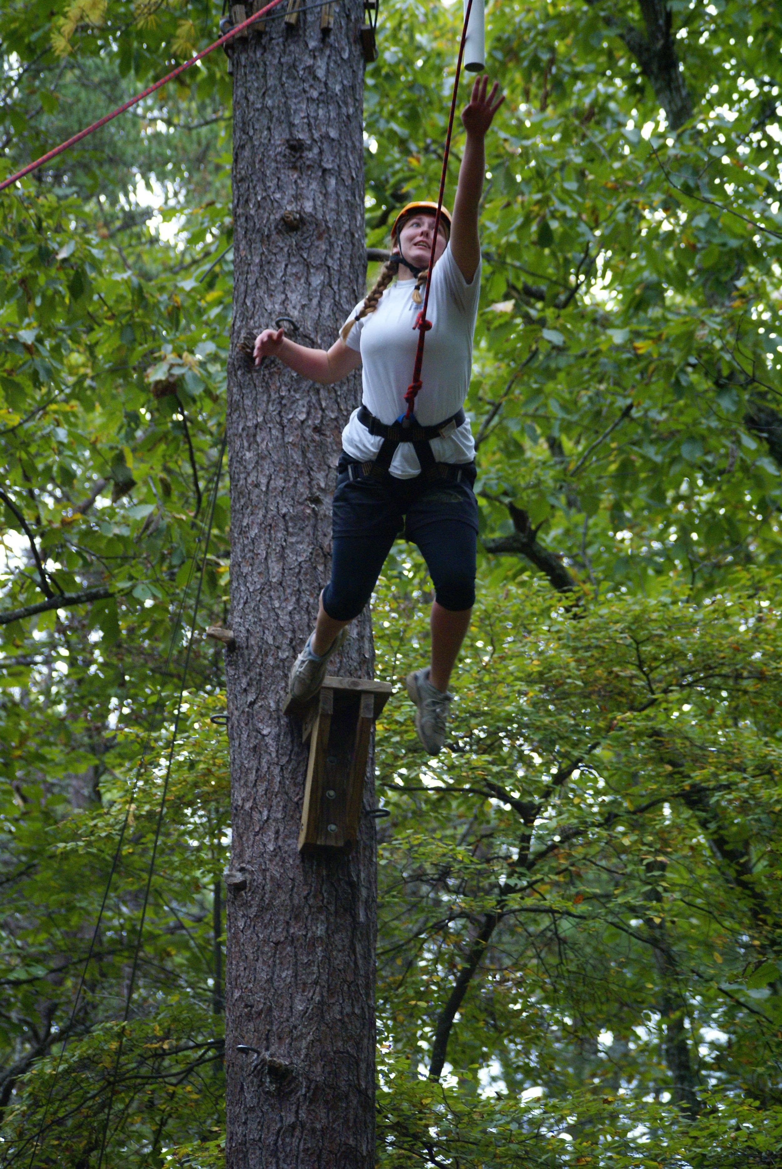 pole climb 3.JPG