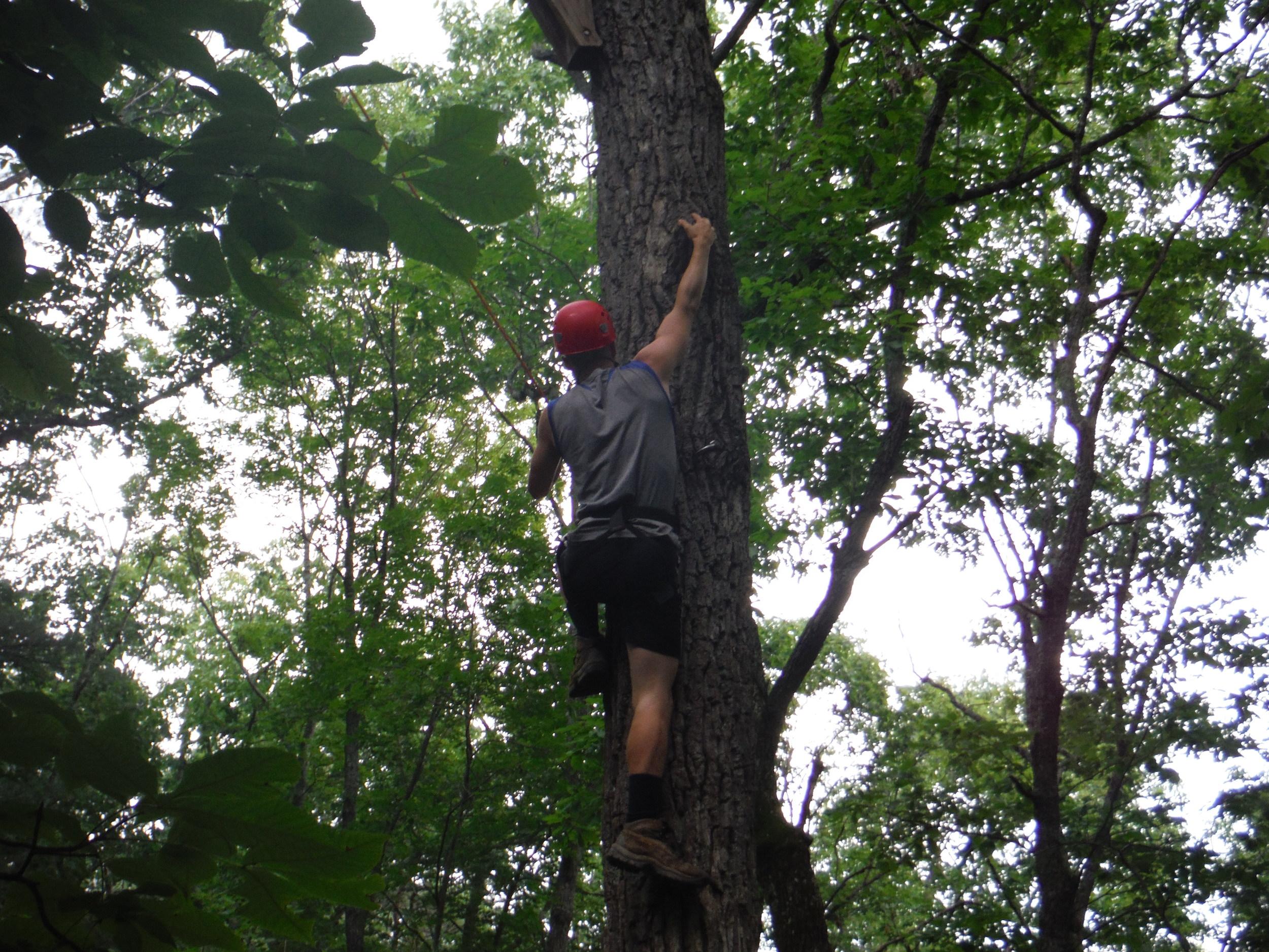 pole climb 5.JPG